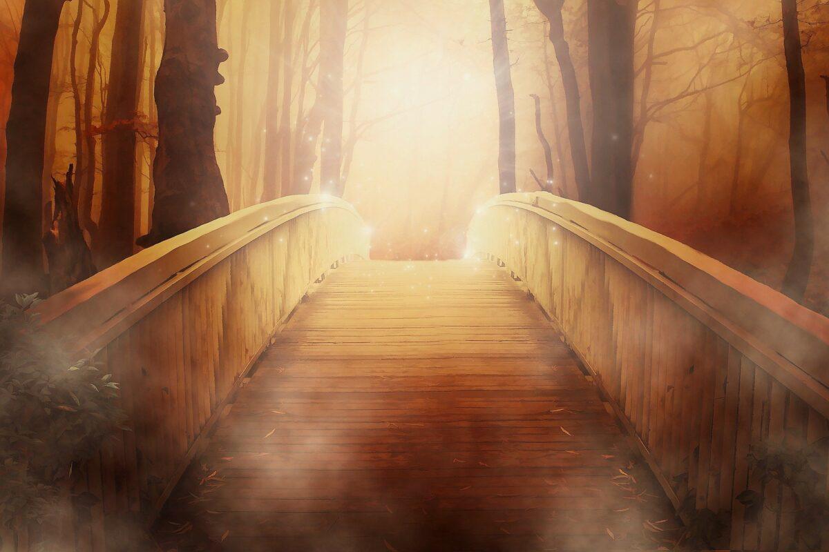 Lutto Perinatale: Come Attraversare il dolore